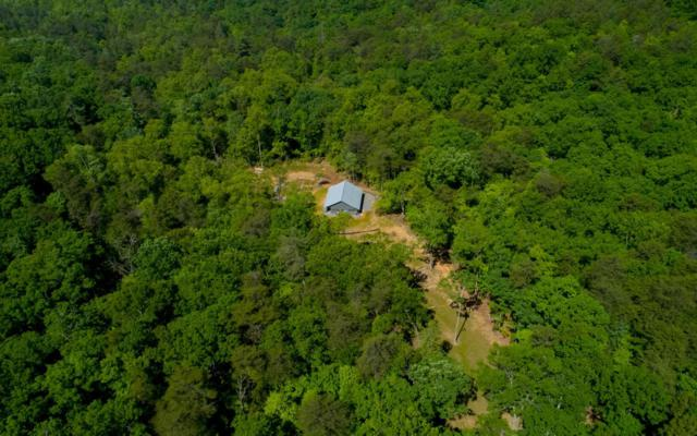 263 Laurel Top Ridge, East Ellijay, GA 30536 (MLS #288485) :: RE/MAX Town & Country