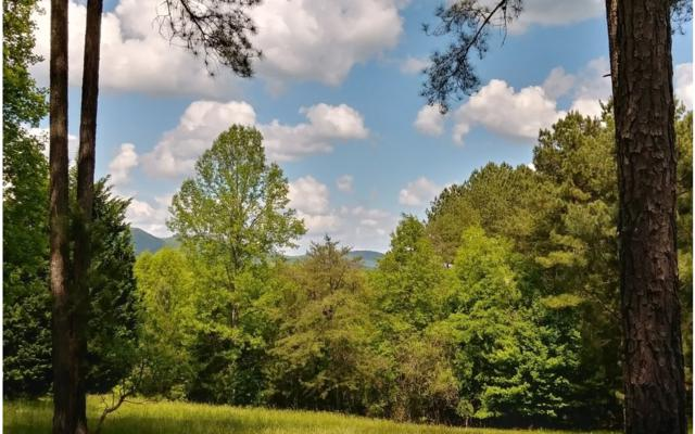 Lot 74 Longview Dr, Blairsville, GA 30512 (MLS #288512) :: RE/MAX Town & Country