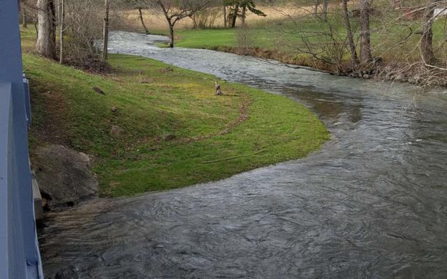 Whispering Pine Lane, Cherry Log, GA 30522 (MLS #288528) :: RE/MAX Town & Country