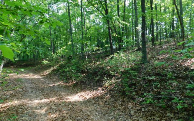 LOT 7 Royal Oaks Trail, Brasstown, NC 28902 (MLS #288590) :: RE/MAX Town & Country