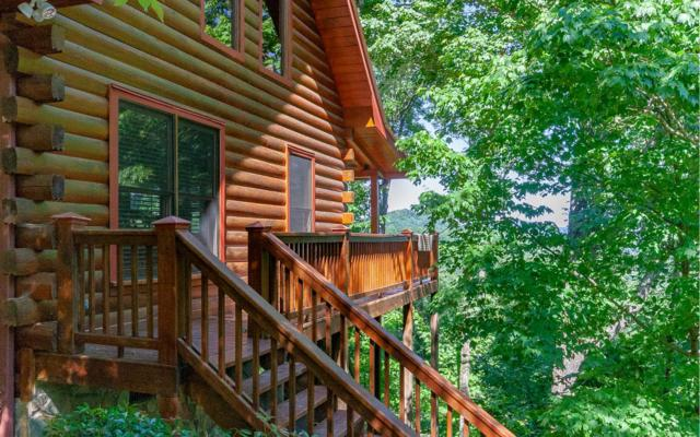 300 Mountain View Rd, Ellijay, GA 30540 (MLS #288622) :: RE/MAX Town & Country