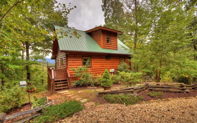 Cherry Log, GA 30522 :: RE/MAX Town & Country