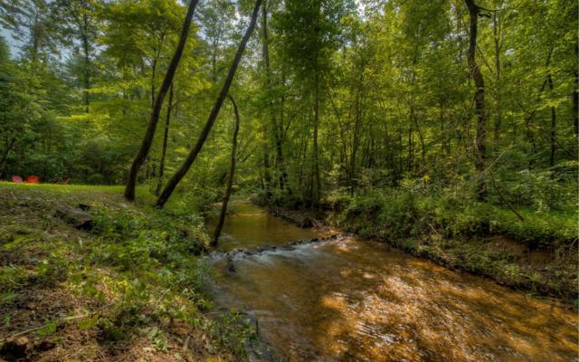 691 Walker Ridge, Ellijay, GA 30540 (MLS #288628) :: RE/MAX Town & Country