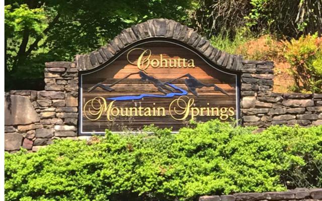 LOT 3 Cohutta Mtn Springs, Ellijay, GA 30540 (MLS #288629) :: RE/MAX Town & Country