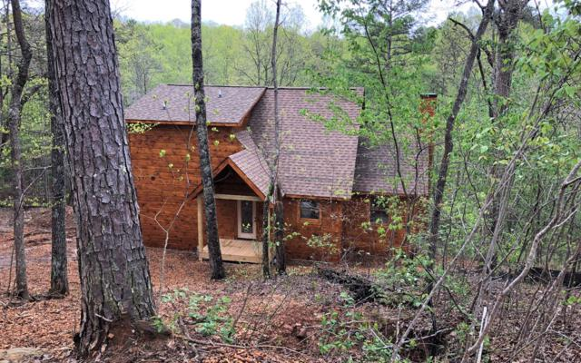 LT23 Blackberry Creek, Blue Ridge, GA 30513 (MLS #288640) :: RE/MAX Town & Country
