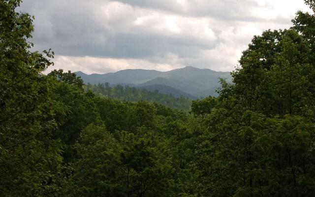 51C Mountain Harbour, Hayesville, NC 28904 (MLS #288643) :: RE/MAX Town & Country