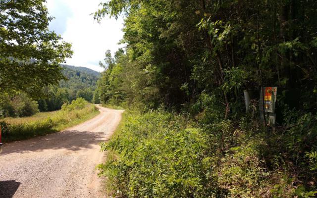 200 Wildwood Drive, Hayesville, NC 28904 (MLS #288645) :: Path & Post Real Estate