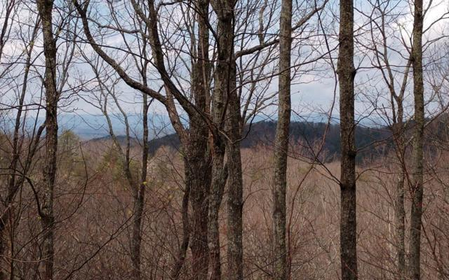LOT 9 The Hemlocks, Ellijay, GA 30536 (MLS #288731) :: RE/MAX Town & Country