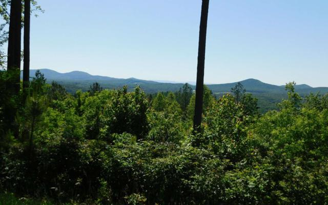 LT356 The Cove @ 1300, Blairsville, GA 30512 (MLS #288765) :: RE/MAX Town & Country