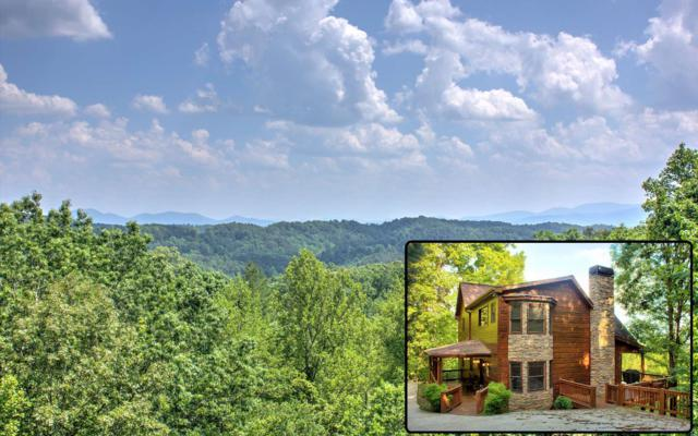 230 Evening Shade, Mineral Bluff, GA 30559 (MLS #288808) :: RE/MAX Town & Country