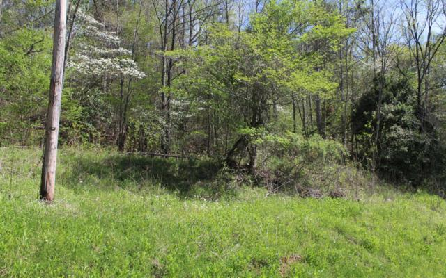 Eagle Fork Prop., Hayesville, NC 28904 (MLS #288900) :: RE/MAX Town & Country