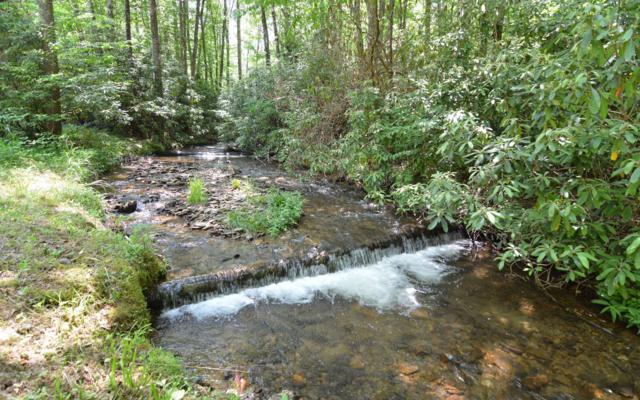 90 Tate Cove Road, Hayesville, NC 28904 (MLS #288925) :: RE/MAX Town & Country