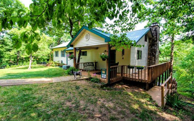 119 Ludlum Drive, Hayesville, NC 28906 (MLS #289015) :: RE/MAX Town & Country