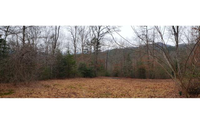 885 Lance Cove Rd, Hayesville, NC 28904 (MLS #289042) :: RE/MAX Town & Country