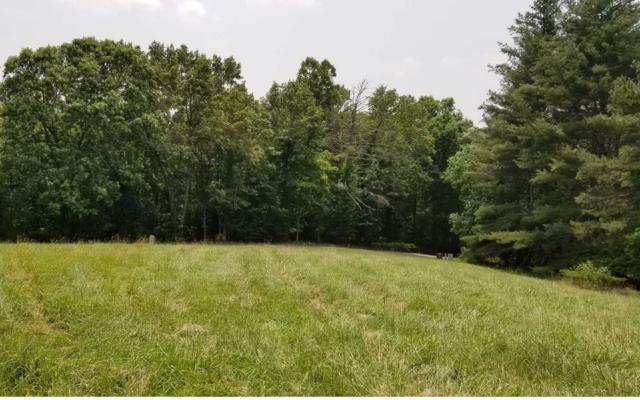 LT29 Mason Farm Road, Blairsville, GA 30512 (MLS #289072) :: RE/MAX Town & Country