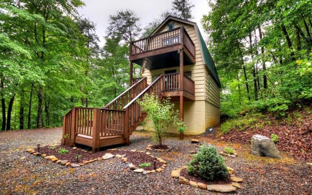 161 Tower, Mineral Bluff, GA 30559 (MLS #289098) :: RE/MAX Town & Country
