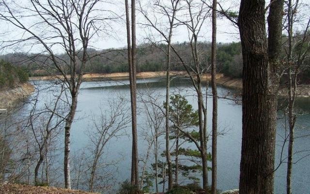 LT3&4 Lonesome Pine Road, Murphy, NC 28906 (MLS #289323) :: RE/MAX Town & Country