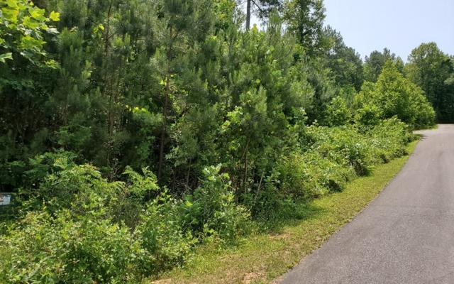 LOT64 Meadow Brooke, Young Harris, GA 30582 (MLS #289338) :: RE/MAX Town & Country