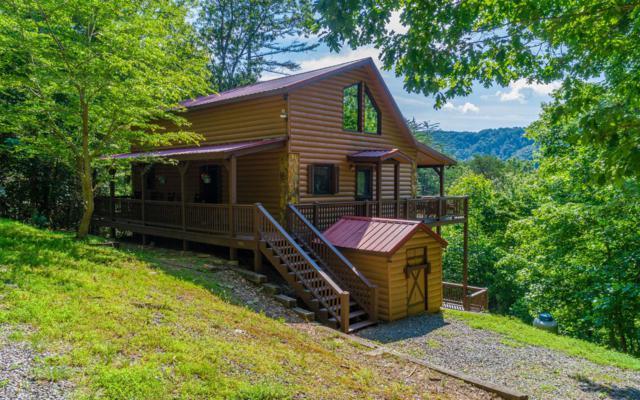 335 Mountain Laurel Ln, Blue Ridge, GA 30513 (MLS #289422) :: RE/MAX Town & Country
