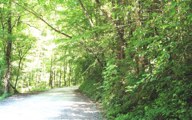 Bear Paw Trail, Cherry Log, GA 30522 (MLS #289473) :: RE/MAX Town & Country