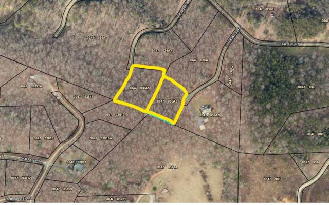 LOT 9 Heritage Drive, Mineral Bluff, GA 30559 (MLS #289503) :: RE/MAX Town & Country