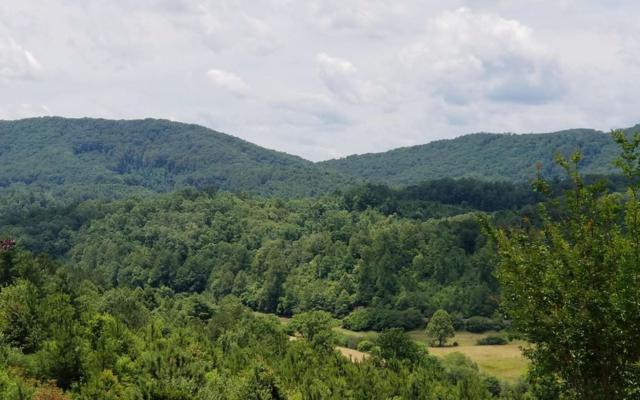 49 Choctaw Ridge Trail, Murphy, NC 28906 (MLS #289559) :: RE/MAX Town & Country