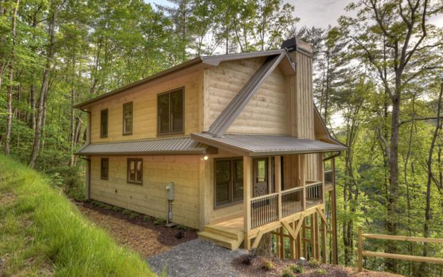 265 Baylor Dr., Cherry Log, GA 30522 (MLS #289572) :: RE/MAX Town & Country