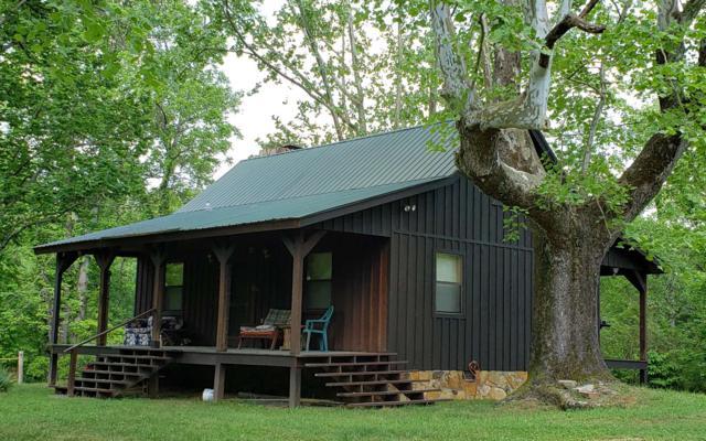 4691 Poplar Road, Mineral Bluff, GA 30559 (MLS #289598) :: RE/MAX Town & Country