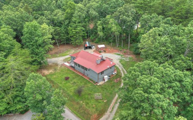 812 Rizzitello Lane, Blairsville, GA 30512 (MLS #289650) :: RE/MAX Town & Country