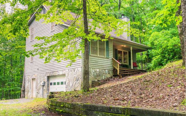 557 Skyview Dr, Ellijay, GA 30540 (MLS #289653) :: RE/MAX Town & Country