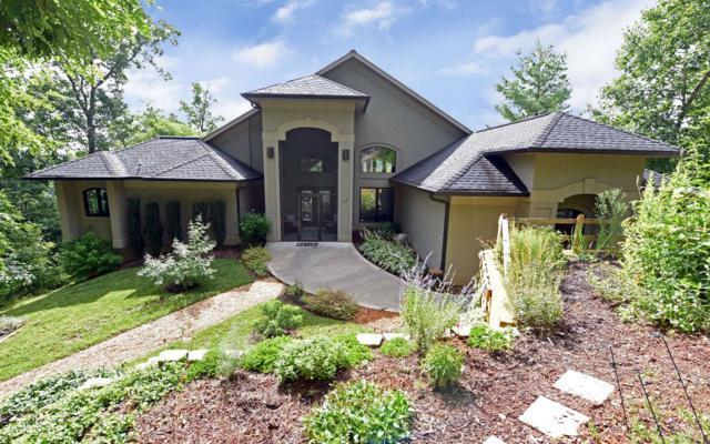 55 Raintree Lane, Blairsville, GA 30512 (MLS #289664) :: RE/MAX Town & Country