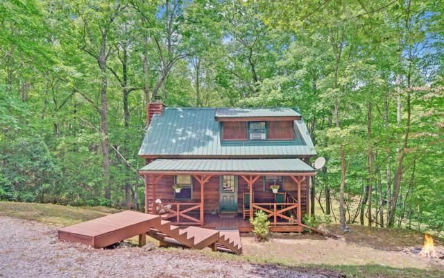 884 Ducks Nest Road, Turtletown, TN 37391 (MLS #289770) :: RE/MAX Town & Country