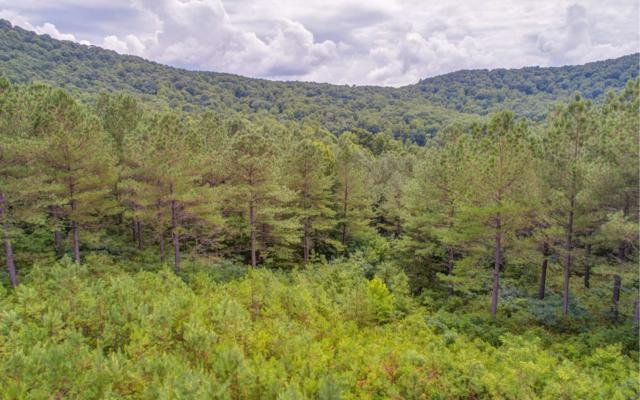 LOT10 Eastview Trail, Ellijay, GA 30540 (MLS #289829) :: Path & Post Real Estate