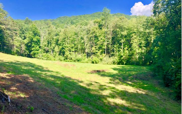 Dinkins Creek Road, Murphy, NC 28906 (MLS #290033) :: RE/MAX Town & Country