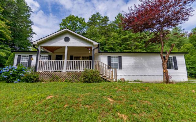 962 N Old Aska Rd, Blue Ridge, GA 30513 (MLS #290073) :: RE/MAX Town & Country