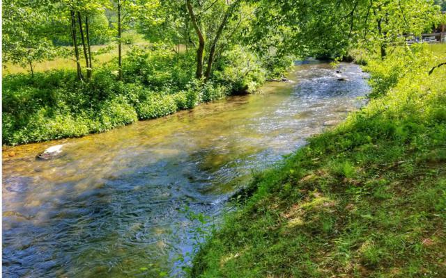 Chestnut Gap Rd, Blue Ridge, GA 30513 (MLS #290105) :: RE/MAX Town & Country