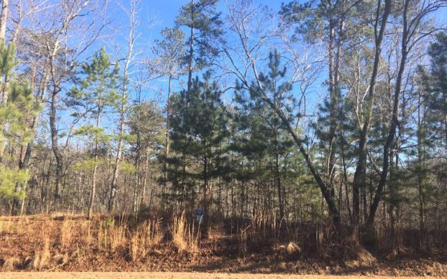 LT166 Harris Creek, Ellijay, GA 30540 (MLS #290112) :: RE/MAX Town & Country