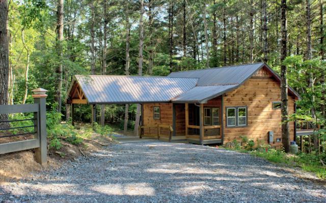 206 Winding Brook Trail, Morganton, GA 30560 (MLS #290145) :: RE/MAX Town & Country