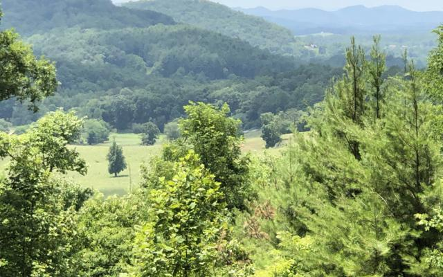 LT 3 Mission Hill Rd, Hayesville, NC 28904 (MLS #290165) :: Path & Post Real Estate