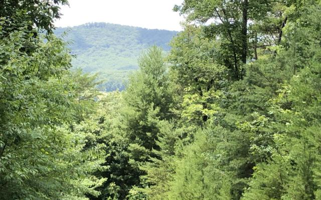 LT 4 Mission Hill Rd, Hayesville, NC 28904 (MLS #290169) :: Path & Post Real Estate