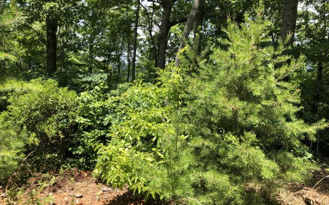 LT 7 Mission Hill Rd, Hayesville, NC 28904 (MLS #290171) :: Path & Post Real Estate