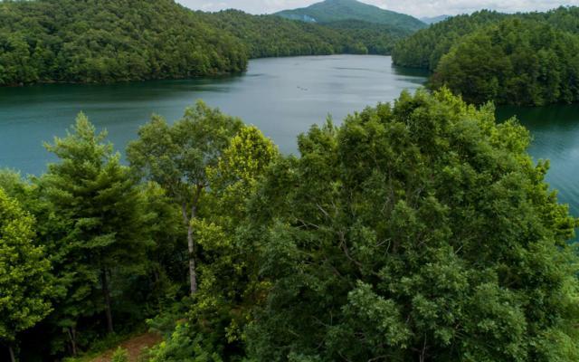 Wilderness Lake Circ, Murphy, NC 28906 (MLS #290233) :: RE/MAX Town & Country
