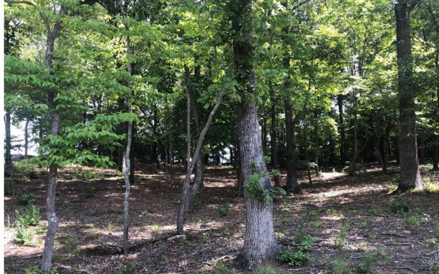 29 Tallulah Landing, Blairsville, GA 30512 (MLS #290234) :: Path & Post Real Estate