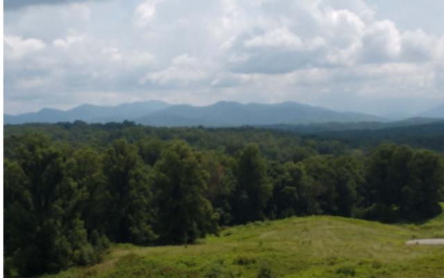 LT11 Arden Acres, Blairsville, GA 30512 (MLS #290242) :: RE/MAX Town & Country