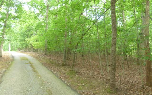 LT 27 Rooks Road, Mineral Bluff, GA 30559 (MLS #290301) :: RE/MAX Town & Country