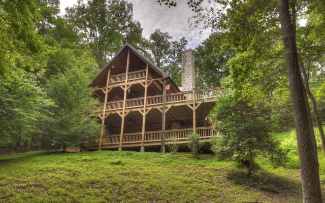 132 Horse Trail Pass, Copperhill, TN 37317 (MLS #290303) :: RE/MAX Town & Country