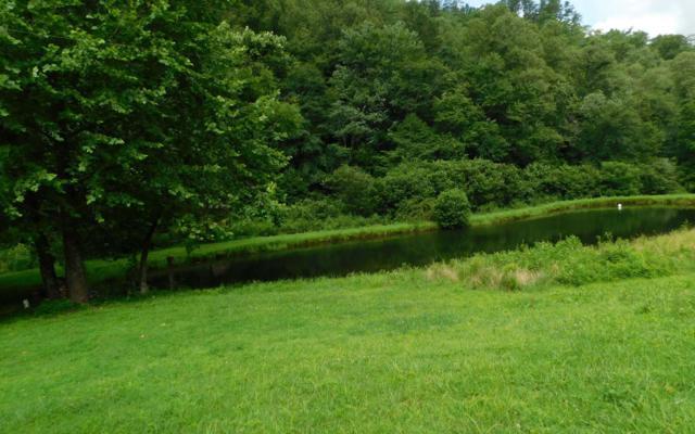 LOT 4 Bridgewater, Hayesville, NC 30582 (MLS #290314) :: Path & Post Real Estate