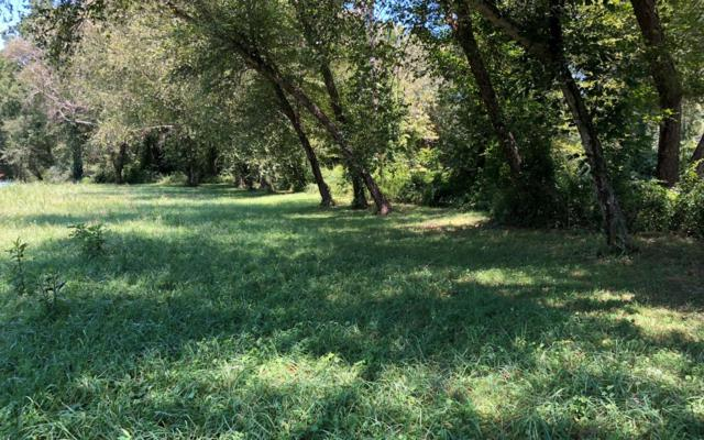 51 Brasstown Trail, Hayesville, NC 28904 (MLS #290402) :: RE/MAX Town & Country