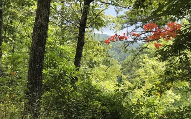 4-5 Stone Creek, Murphy, NC 28906 (MLS #290617) :: Path & Post Real Estate