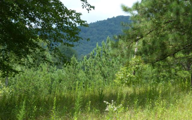 LT 14 Hillside Trace, Blairsville, GA 30512 (MLS #290641) :: RE/MAX Town & Country